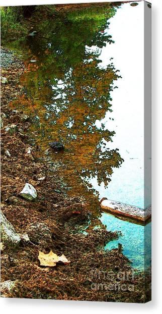 Lakeside And Me Canvas Print by Steven Lebron Langston
