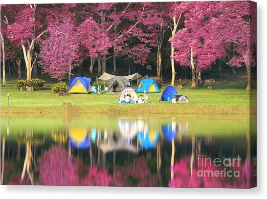 Landscape Of Pink Garden Canvas Print by Anek Suwannaphoom