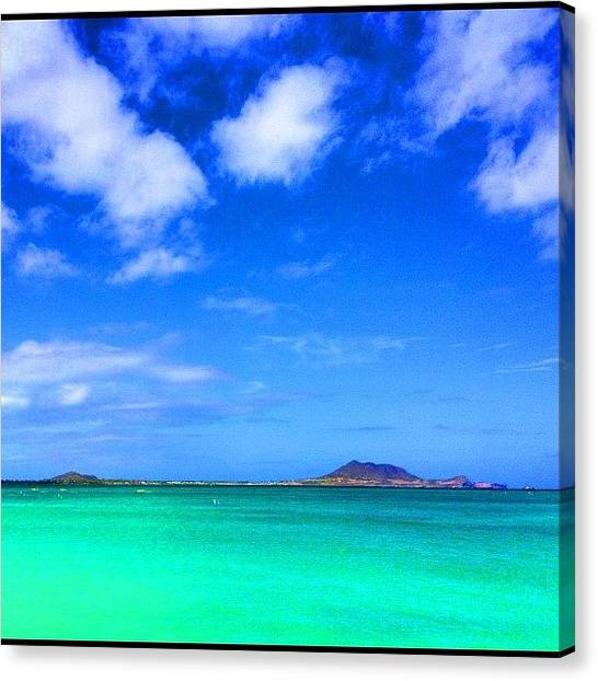 Seahorses Canvas Print - #lanikai #luckywelivehawaii #wave by Andy Walters