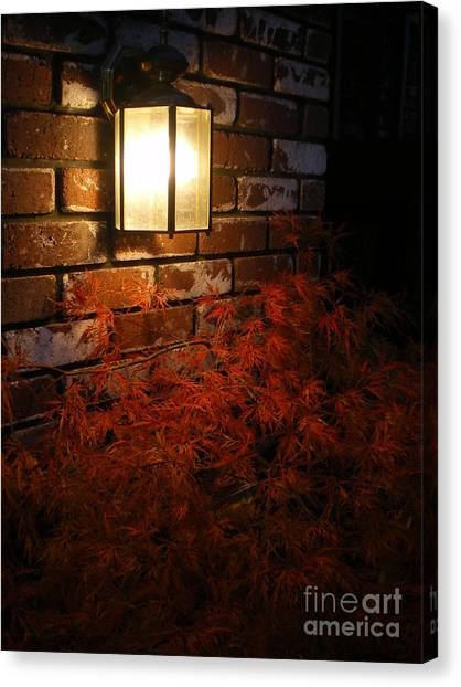 Lantern Light Maple Canvas Print