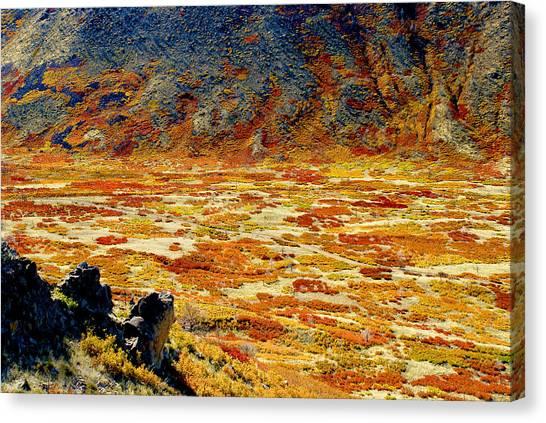 Lasal Mt. Kaleidoscope Canvas Print