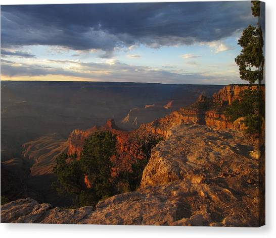 Last Rays At Grand Canyon Canvas Print by Pasha Sourbeer