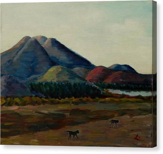 Late Afternoon, Peru Impression Canvas Print