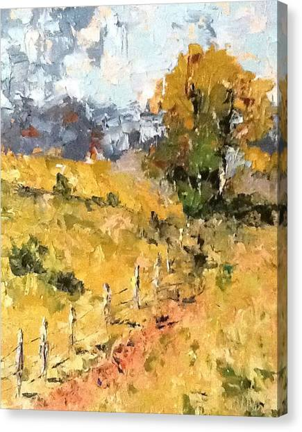 Late Summer Afternoon Canvas Print