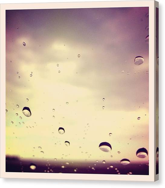 Raindrops Canvas Print - Lay It Out Like Lavender by Bunnie C