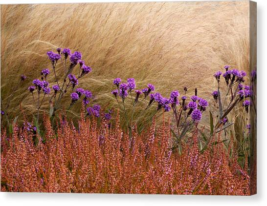 Layers Canvas Print by Denice Breaux