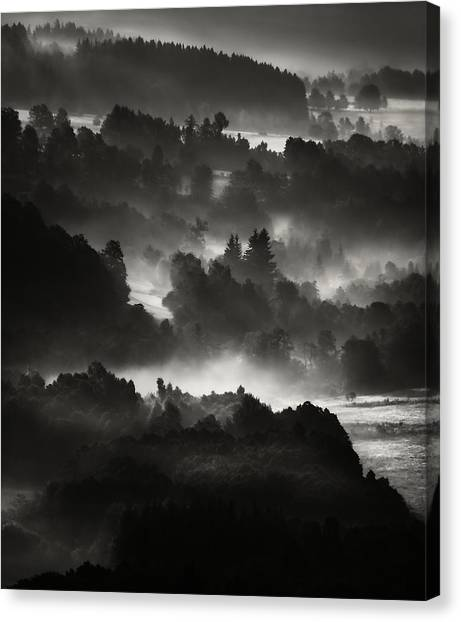 Layers Canvas Print by Jaromir Hron