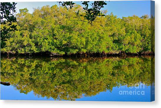 Lazy Reflections Canvas Print