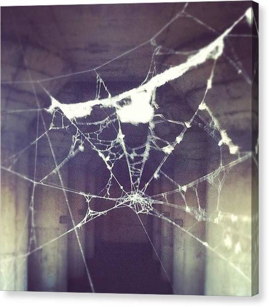 Spiders Canvas Print - Leave A Message And I'll Call You by Jenna Luehrsen
