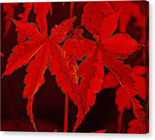 Leaves Of Red Canvas Print