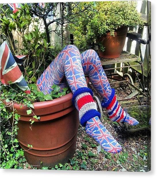 Quirky Canvas Print - Legs In Flowerpot by Natasha Futcher