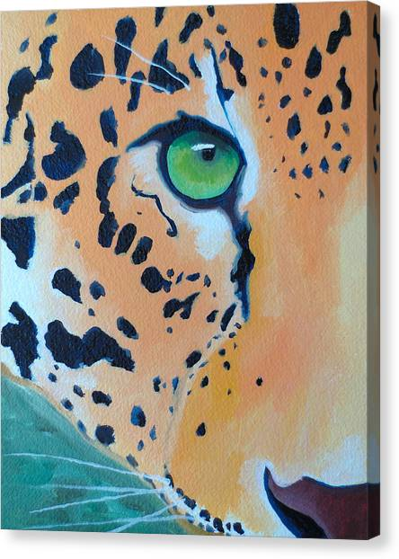 Leopard Eye Canvas Print by John  Sweeney