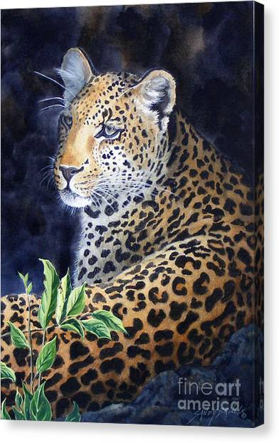 Leopard  Sold  Prints Available Canvas Print
