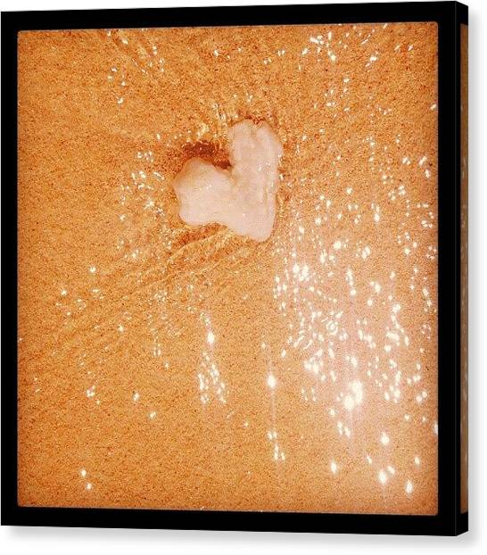 Seashells Canvas Print - Let Love Shine For You by Jade Merillana