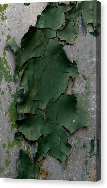 Green Camo Canvas Print - Lichen-like Paint by Carla Parris