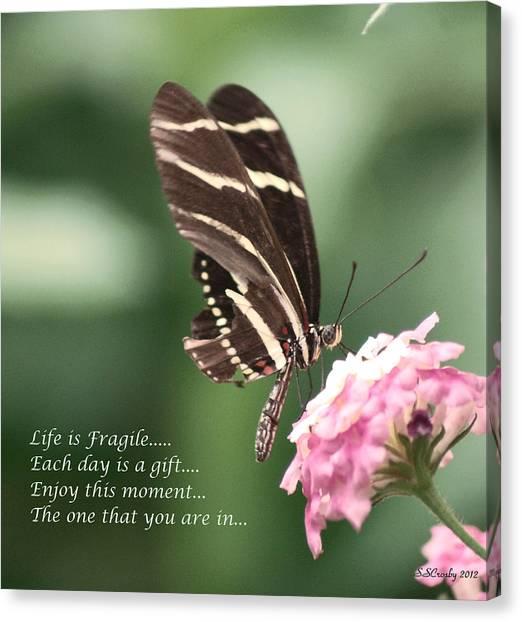 Life Is Fragile Canvas Print