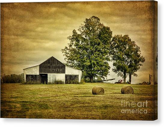 Life On The Farm Canvas Print