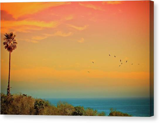 Palm Trees Sunsets Canvas Print - Light Of Sun Setting On  Malibu Beach by Albert Valles