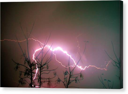 Lightning And Trees Canvas Print