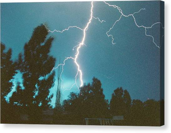 Lightning Tree Canvas Print by Trent Mallett