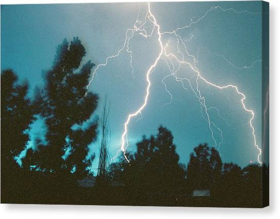 Lightning Trees Canvas Print by Trent Mallett