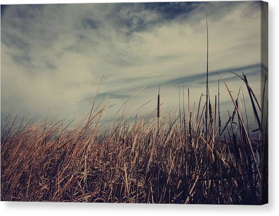 Marsh Grass Canvas Print - Like The Way You Used To Run Your Fingers Through My Hair by Laurie Search