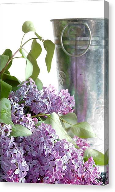 Silver Leaf Canvas Print - Lilacs by HD Connelly