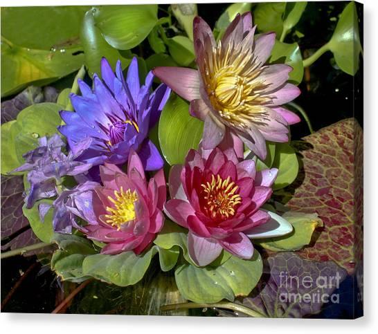 Lilies No. 11 Canvas Print