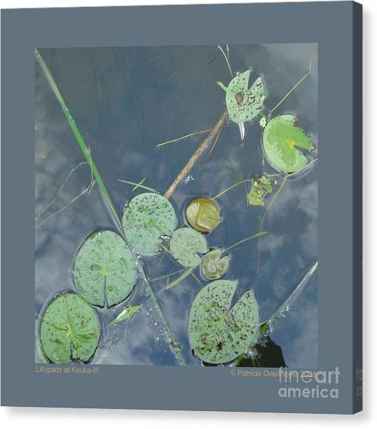 Lillypads At Keuka-iii Canvas Print