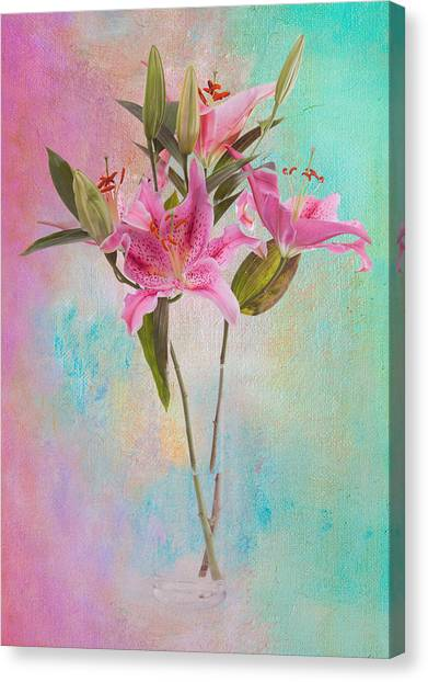 Lily 322a Canvas Print