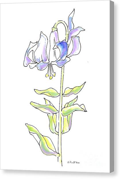 Modern Flower Canvas Print - Lily Watercolor Drawing 5 by Gordon Punt