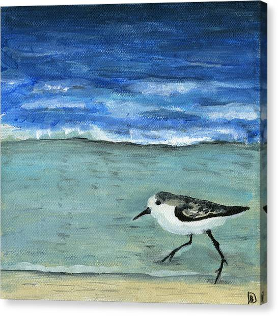 Little Bird At The Beach Canvas Print