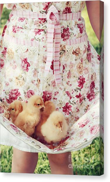 Little Chicks Canvas Print