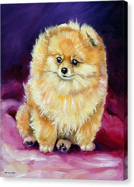 Pomeranians Canvas Print - Little Dude - Pomeranian by Lyn Cook