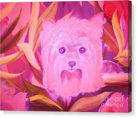 Little Pink Yorkie Canvas Print by Rachel Carmichael