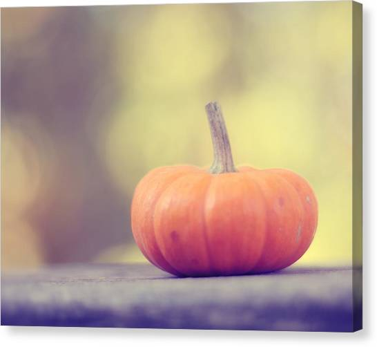 Pumpkins Canvas Print - Little Pumpkin by Amy Tyler