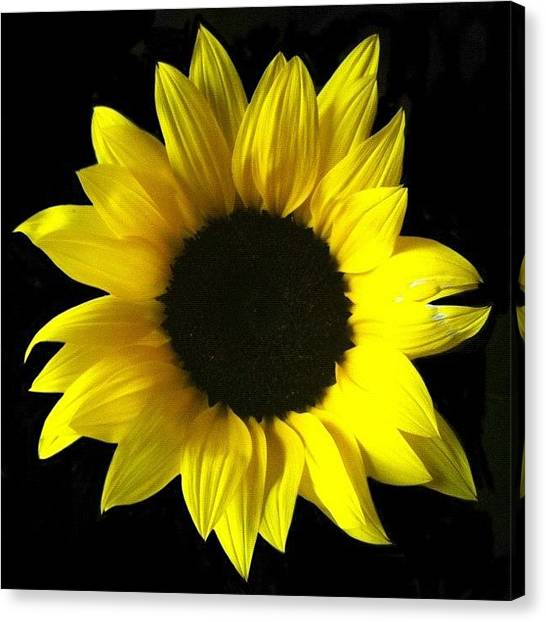 Berries Canvas Print - Live Life Like A Sunflower, And Find by Christine Cherry