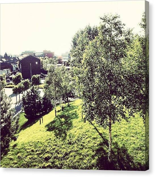 House Canvas Print - #liverpool #uk #england #green #tree by Abdelrahman Alawwad