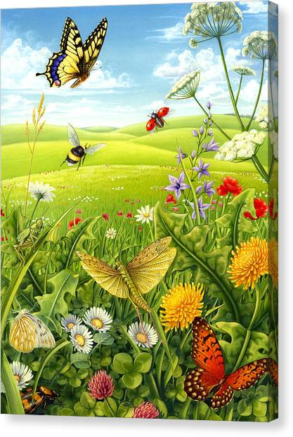 Living Meadow Canvas Print