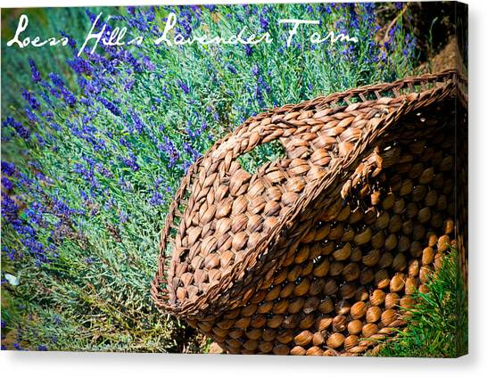 Loess Hills Lavender Canvas Print by Elizabeth Gingerich