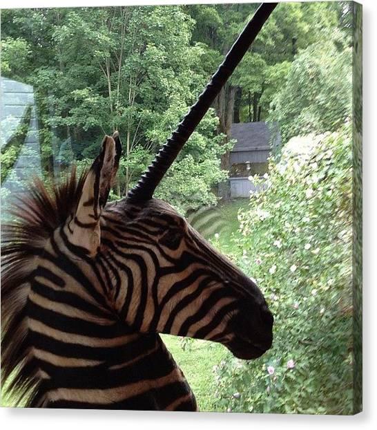 Hunting Canvas Print - Lol #unicorn by Hunter Graves