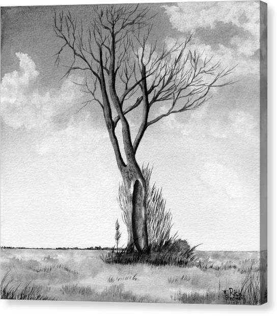 Lone Tree On The Prairie Canvas Print