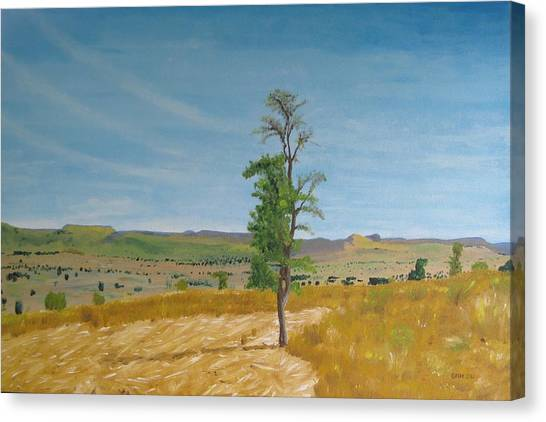 Lonely Tree In Africa Canvas Print by Glenn Harden