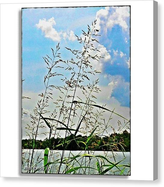 Tennessee Canvas Print - Long Weekend by Mari Posa