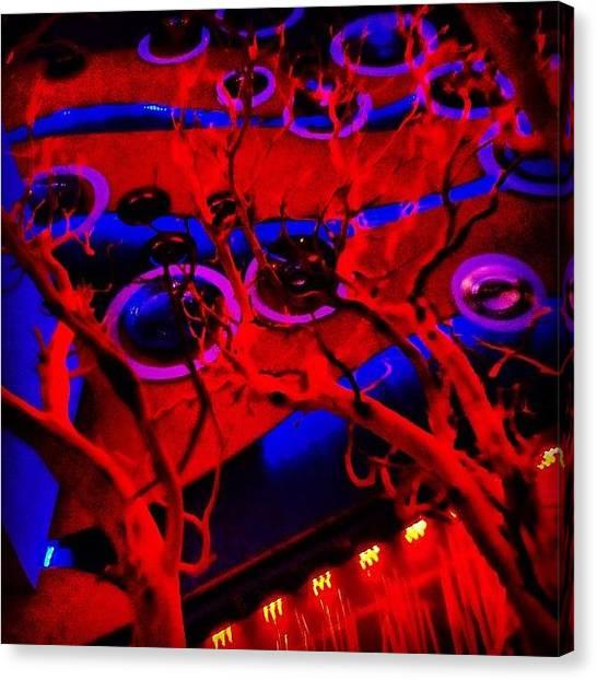 Bamboo Canvas Print - #longbeach #lbc #love #bluefin #sashimi by Nichole Zellmer