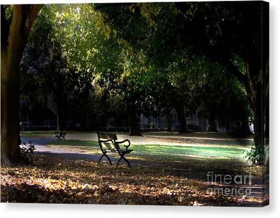 Lonley Park Bench Canvas Print