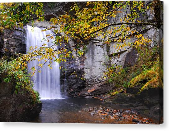 Pisgah National Forest Canvas Print - Looking Glass Falls by Alan Lenk