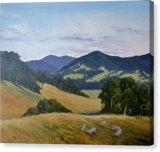 Looking South From Foxground Canvas Print
