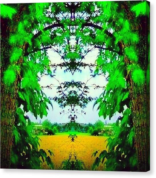 Droid Canvas Print - Looking Through The Trees At The Golden by Marianne Dow