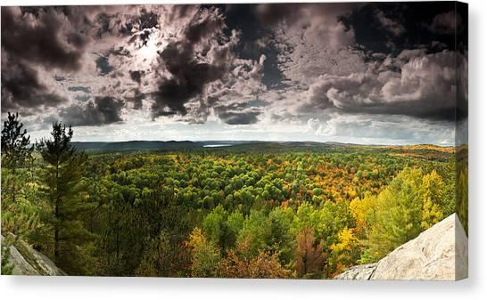 Treeline Canvas Print - Lookout Trail by Cale Best